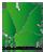 Logo IGS DeiWa